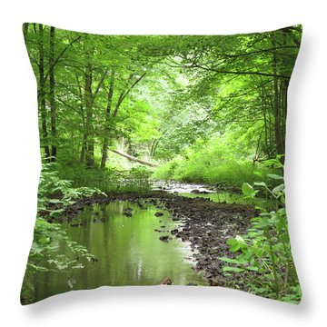 Carver Creek Throw Pillow by Kimberly Mackowski