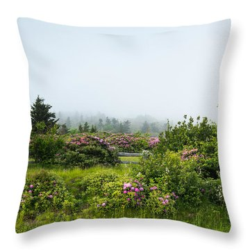 Carvers Gap Pisgah Cherokee National Forest Appalachian Trail Throw Pillow