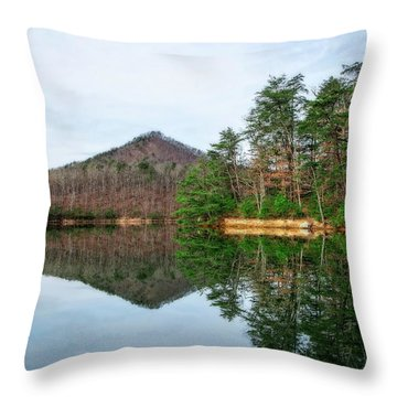 Throw Pillow featuring the photograph Carvins Cove  by Alan Raasch