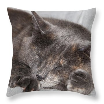 Cas-4 Throw Pillow