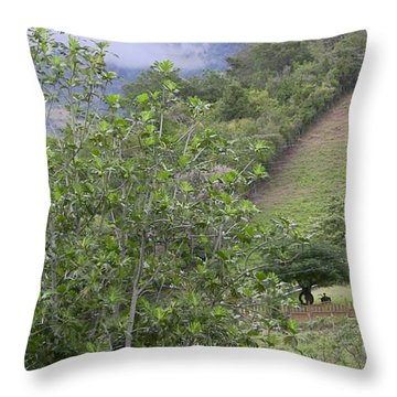 Casa Campo Adjuntas Throw Pillow