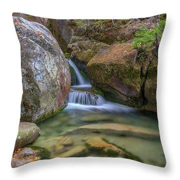 Cascade At Katahdin Stream Throw Pillow