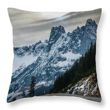 Cascade Beauty Throw Pillow