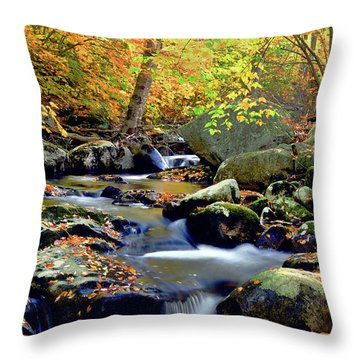 Cascade Brook Throw Pillow