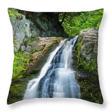 Throw Pillow featuring the photograph Cascade Falls In South Portland In Maine by Ranjay Mitra