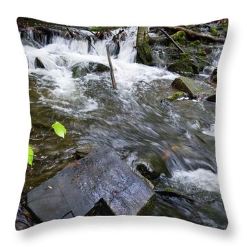 Cascade Falls Stream, Farmington, Maine  -30329 Throw Pillow