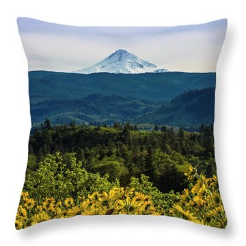Cascade Spring Throw Pillow