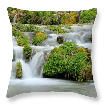 Cascade Springs Throw Pillow by Johnny Adolphson