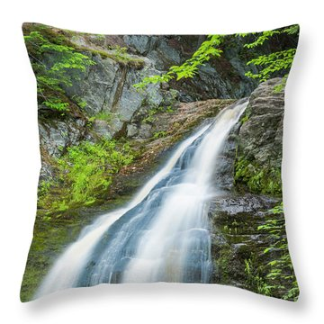 Throw Pillow featuring the photograph Cascade Waterfalls In South Maine by Ranjay Mitra