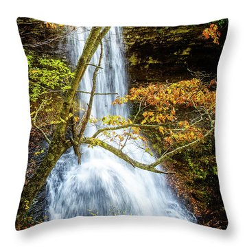 Cascades Deck View Throw Pillow