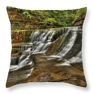 Cascades Throw Pillow by Evelina Kremsdorf