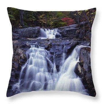 Cascades In Autumn Throw Pillow