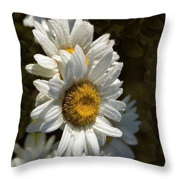 Cascading Daisy Throw Pillow by Elsa Marie Santoro
