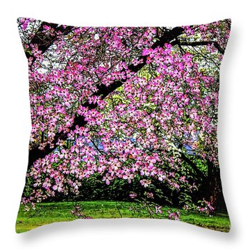 Cascading Dogwood Copyright Mary Lee Parker 17, Throw Pillow