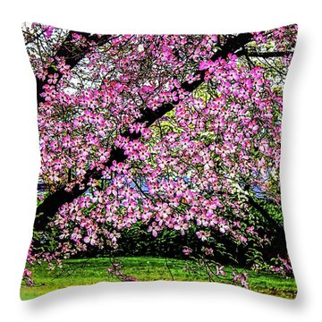 Cascading Dogwood Copyright Mary Lee Parker 17, Throw Pillow by MaryLee Parker