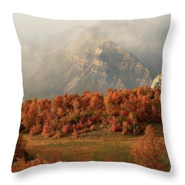 Cascading Fall Throw Pillow