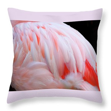 Cascading Feathers Throw Pillow by Elvira Butler