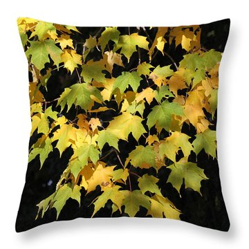 Throw Pillow featuring the photograph Cascading Leaves by Doris Potter