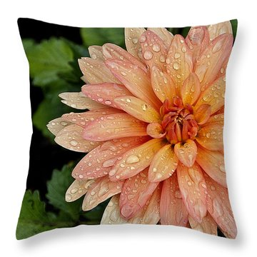 Cascading Rain Droplets Throw Pillow