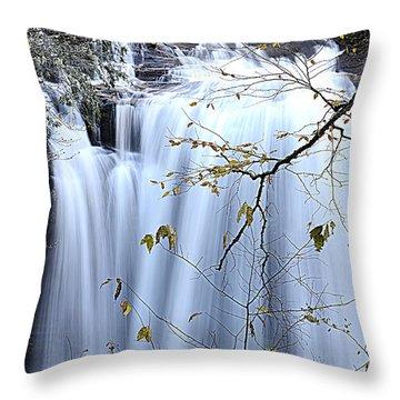 Cascading Water Fall Throw Pillow