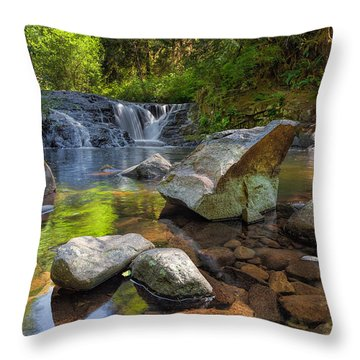 Cascading Waterfall At Sweet Creek Falls Trail Throw Pillow by David Gn