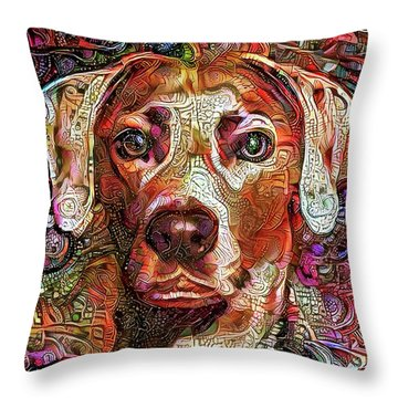Cash The Lacy Dog Throw Pillow