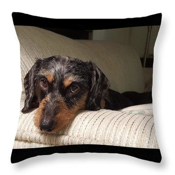 Cassie Throw Pillow by Judy Wanamaker