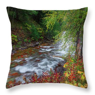 Throw Pillow featuring the photograph Castle Creek Beauty by Tim Reaves