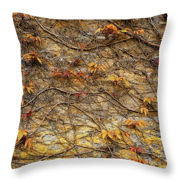 Castle Ivy Throw Pillow