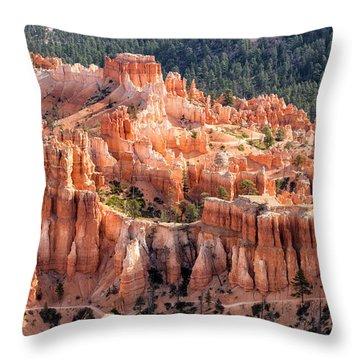Castle Path Throw Pillow