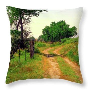Castledale Farm Road Throw Pillow