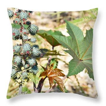 Throw Pillow featuring the photograph Castor Oil Plant by Ray Shrewsberry