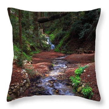 Castro Canyon In Big Sur Throw Pillow
