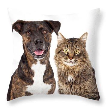 Cat And Dog Closeup Throw Pillow by Susan Schmitz