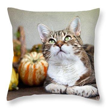 Willow Throw Pillows