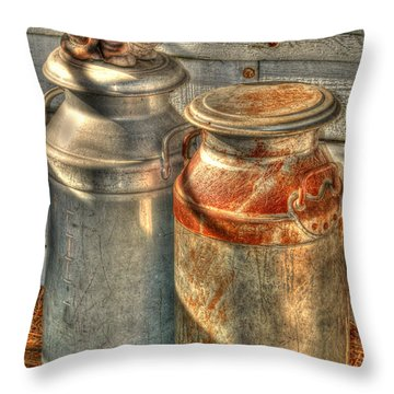 Cat And The Churns Throw Pillow