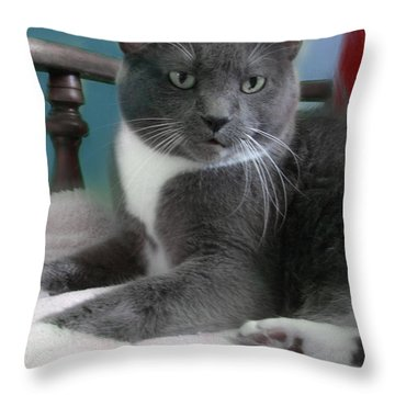 Cat Boticas Portrait  Throw Pillow
