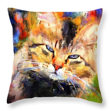 Cat Color Throw Pillow