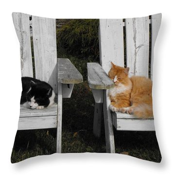 Cat Days Of Summer Throw Pillow by David and Lynn Keller
