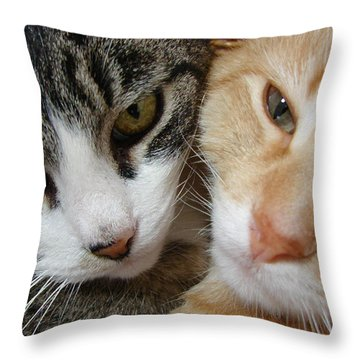 Throw Pillow featuring the digital art Cat Faces by Jana Russon