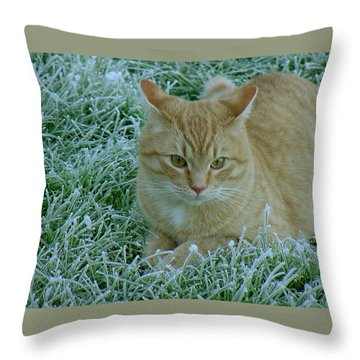 Cat In Frosty Grass Throw Pillow