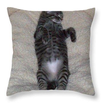 Cat In Repose Throw Pillow