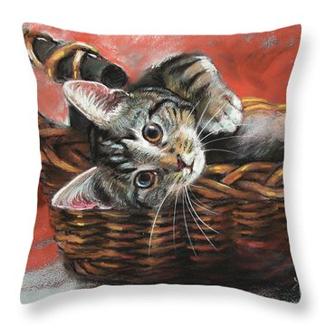 Cat In The Basket Throw Pillow