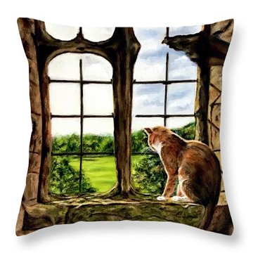Cat In The Castle Window-close Up Throw Pillow