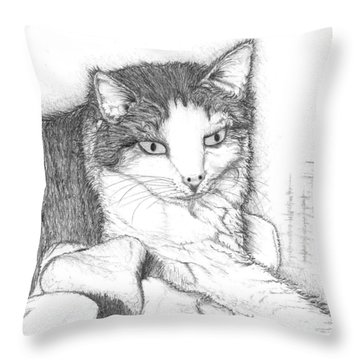 Domestic Cat Throw Pillow