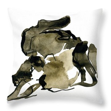 Cat Nap - 2 Throw Pillow