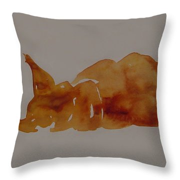 Cat Nap Throw Pillow by Shirley Heyn