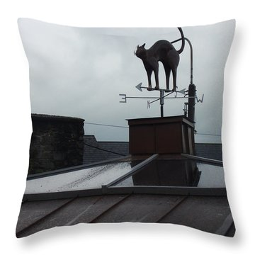 Cat On A Cool Tin Roof Throw Pillow