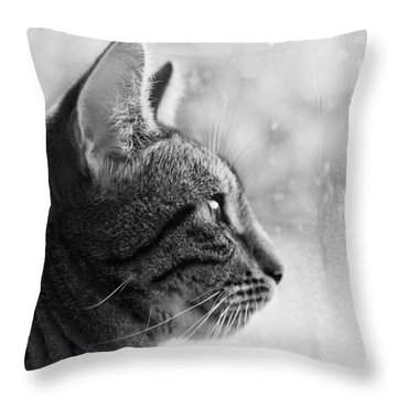 November Rain Throw Pillow