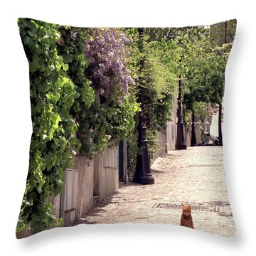 Cat On Cobblestone Throw Pillow